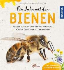 David Gerstmeier: Ein Jahr mit den Bienen, Buch