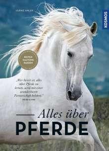 Ulrike Amler: Alles über Pferde, Buch
