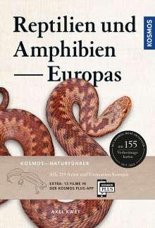 Axel Kwet: Reptilien und Amphibien Europas, Buch