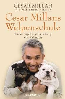 Cesar Millan: Cesar Millans Welpenschule, Buch