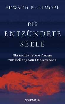 Edward Bullmore: Die entzündete Seele, Buch