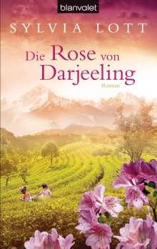 Sylvia Lott: Die Rose von Darjeeling, Buch