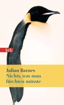 Julian Barnes: Nichts, was man fürchten müsste, Buch