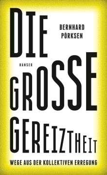 Bernhard Pörksen: Die große Gereiztheit, Buch