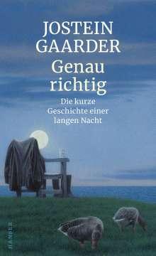 Jostein Gaarder: Genau richtig, Buch