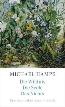 Michael Hampe: Die Wildnis, die Seele, das Nichts, Buch