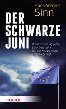 Hans-Werner Sinn: Der Schwarze Juni, Buch