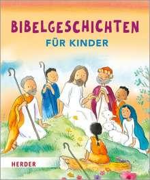 Sally Ann Wright: Bibelgeschichten für Kinder, Buch