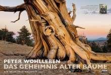 Peter Wohlleben: Der Baumleben-Kalender 2020, Diverse