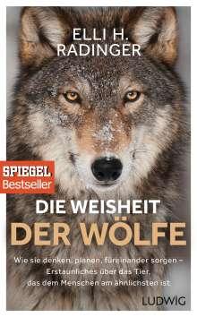 Elli H. Radinger: Die Weisheit der Wölfe, Buch