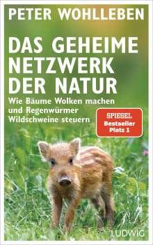 Peter Wohlleben: Das geheime Netzwerk der Natur, Buch