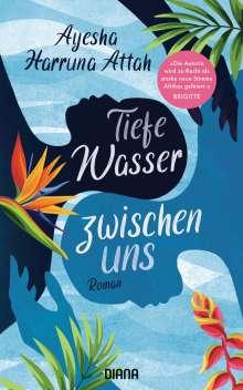 Ayesha Harruna Attah: Tiefe Wasser zwischen uns, Buch