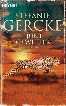 Stefanie Gercke: Junigewitter, Buch