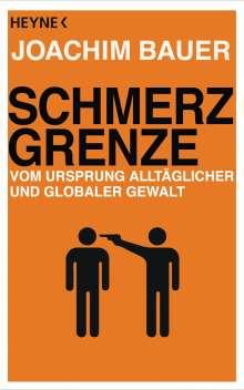 Joachim Bauer: Schmerzgrenze, Buch
