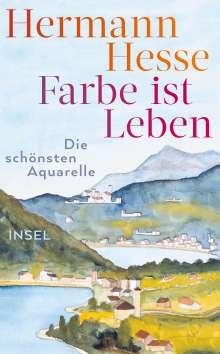 Hermann Hesse: Farbe ist Leben, Buch