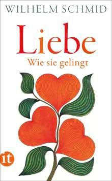 Wilhelm Schmid: Liebe, Buch
