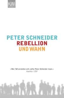 Peter Schneider: Rebellion und Wahn, Buch