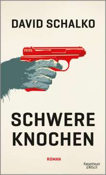David Schalko: Schwere Knochen, Buch
