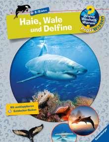 Dela Kienle: Haie, Wale und Delfine, Buch