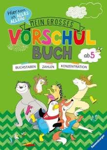 Kirstin Jebautzke: Mein großes Vorschulbuch, Buch
