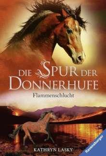 Kathryn Lasky: Die Spur der Donnerhufe, Band 1: Flammenschlucht, Buch