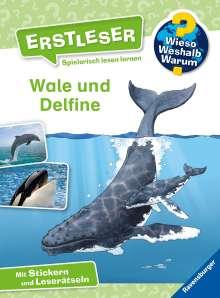 Sandra Noa: Wieso? Weshalb? Warum? Erstleser: Wale und Delfine (Band 3), Buch