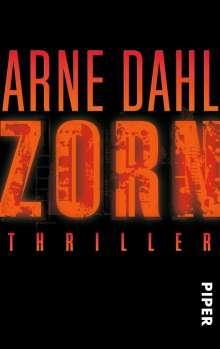Arne Dahl: Zorn, Buch
