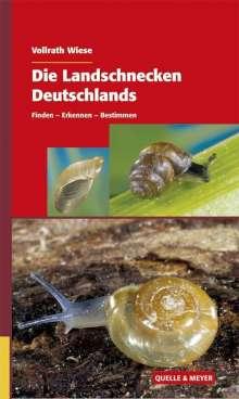 Vollrath Wiese: Die Landschnecken Deutschlands, Buch