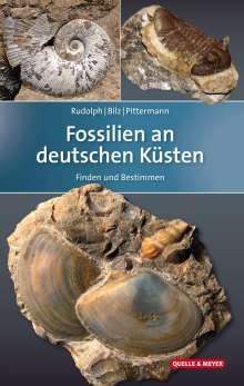 Frank Rudolph: Fossilien an deutschen Küsten, Buch