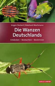Jürgen Deckert: Die Wanzen Deutschlands, Buch