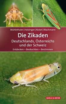 Roland Mühlethaler: Die Zikaden Deutschlands, Österreichs und der Schweiz, Buch