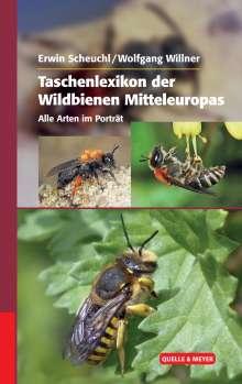 Erwin Scheuchl: Taschenlexikon der Wildbienen Mitteleuropas, Buch