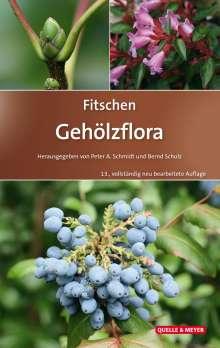 Peter A. Schmidt: Fitschen - Gehölzflora, Buch