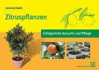 Heinrich Beltz: Zitruspflanzen, Buch