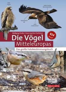 Wolfgang Fiedler: Die Vögel Mitteleuropas nach Fotos bestimmen, Buch