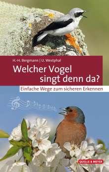 Hans-Heiner Bergmann: Welcher Vogel singt denn da?, Buch