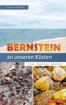 Kerstin von Holt: Bernstein an unseren Küsten, Buch