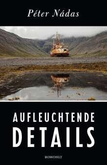 Péter Nádas: Aufleuchtende Details, Buch
