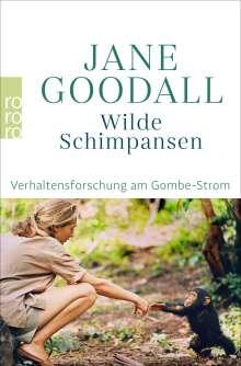 Jane Goodall: Wilde Schimpansen, Buch