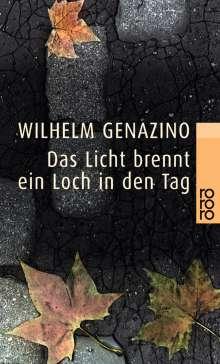 Wilhelm Genazino: Das Licht brennt ein Loch in den Tag, Buch