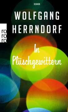 Wolfgang Herrndorf (1965-2013): In Plüschgewittern, Buch