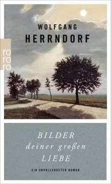 Wolfgang Herrndorf: Bilder deiner großen Liebe, Buch