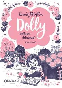 Enid Blyton: Dolly - Dolly im Möwennest, Buch