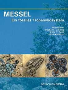 MESSEL - Ein fossiles Tropenökosystem, Buch