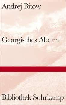 Andrej Bitow: Georgisches Album, Buch