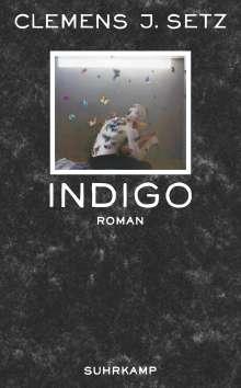 Clemens J. Setz: Indigo, Buch