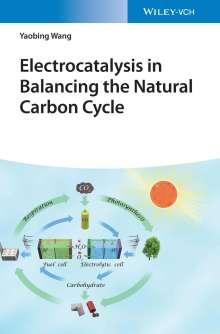 Yaobing Wang: Electrocatalysis in Balancing the Natural Carbon Cycle, Buch