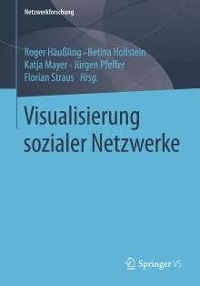 Visualisierung sozialer Netzwerke, Buch