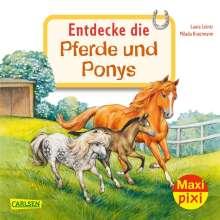 Laura Leintz: Maxi Pixi 342: VE 5: Entdecke die Pferde und Ponys (5 Exemplare), Buch