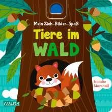Julia Hofmann: Mein Zieh-Bilder-Spaß: Tiere im Wald, Buch